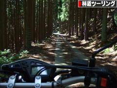 にほんブログ村 バイクブログ 林道ツーリングへ