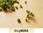 ブログランキング・にほんブログ村 その他生活ブログへ
