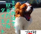 にほんブログ村 ダイエットブログ ダイエット日記へ