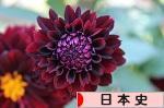 にほんブログ村 歴史ブログ 日本史へ