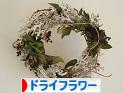 にほんブログ村 花・園芸ブログ ドライフラワーへ