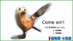 にほんブログ村 その他趣味ブログ 動物園・水族館へ
