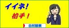 にほんブログ村 アウトドアブログ 自然観察へ