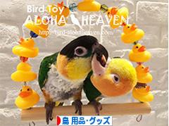にほんブログ村 鳥ブログ 鳥 用品・グッズへ
