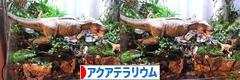 にほんブログ村 観賞魚ブログ アクアテラリウム へ