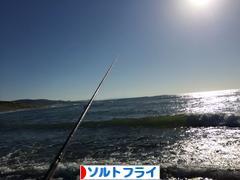 にほんブログ村 釣りブログ ソルトフライフィッシングへ