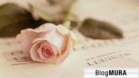 にほんブログ村 恋愛ブログ 結婚までの道のりへ