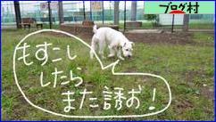 にほんブログ村 犬ブログ 元捨て犬・元保護犬へ
