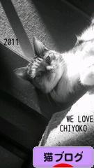 https://cat.blogmura.com/img/originalimg/0000810225.jpg