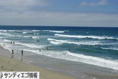 にほんブログ村 海外生活ブログ サンディエゴ情報へ
