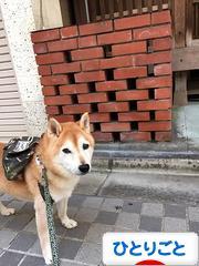 にほんブログ村 その他日記ブログ ひとりごとへ