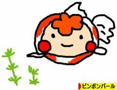 にほんブログ村 観賞魚ブログ ピンポンパールへ