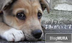 ブログランキング・にほんブログ村へ