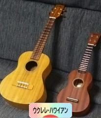 にほんブログ村 音楽ブログ ウクレレ・ハワイアンへ