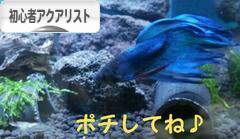 にほんブログ村 観賞魚ブログ 初心者アクアリストへ