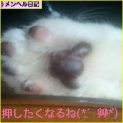 にほんブログ村 メンタルヘルスブログ メンヘル日記へ