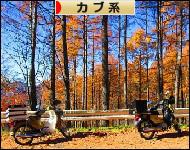 にほんブログ村 カブ系ブログランキング