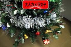 にほんブログ村 写真ブログ 大人カメラ女子(女性初心者)へ