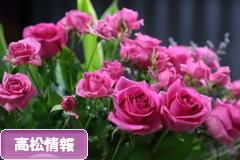 にほんブログ村 地域生活(街) 四国ブログ 高松情報へ