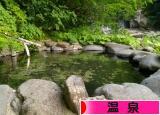にほんブログ村 旅行ブログ 温泉・温泉街へ