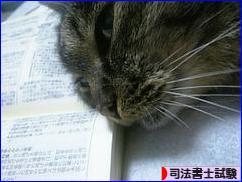 にほんブログ村 資格ブログ 司法書士試験へ