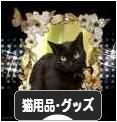 にほんブログ村 猫ブログ 猫用t品・グッズへ