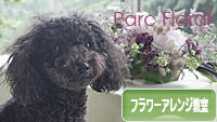 にほんブログ村 花・園芸ブログ フラワーアレンジ教室・販売へ