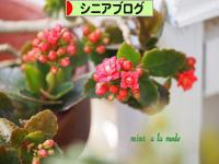 にほんブログ村 シニア日記ブログへ