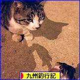 にほんブログ村 釣りブログ 九州釣行記へ