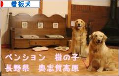 にほんブログ村 犬ブログ 看板犬へ
