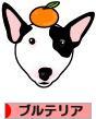 にほんブログ村 犬ブログ ブルテリアへ