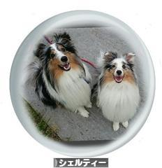 https://dog.blogmura.com/sheltie/img/originalimg/0000992586.jpg