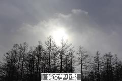 にほんブログ村 小説ブログ 純文学小説へ