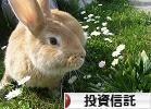 にほんブログ村 株ブログ 投資信託へ