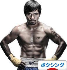 にほんブログ村 格闘技ブログ ボクシングへ