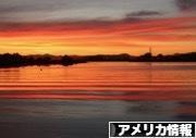にほんブログ村 海外生活ブログ アメリカ情報へ