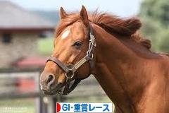 にほんブログ村 競馬ブログ GI・重賞レースへ
