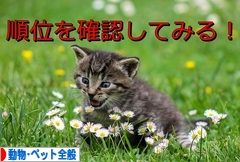 にほんブログ村 その他ペットブログ 動物・ペット全般へ
