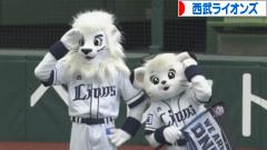にほんブログ村 野球ブログ 埼玉西武ライオンズ