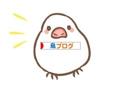 にほんブログ村 鳥ブログ