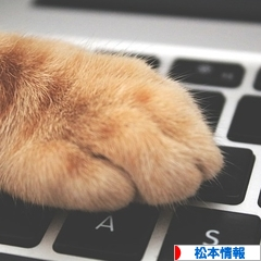 にほんブログ村 地域生活(街) 中部ブログ 松本情報へ