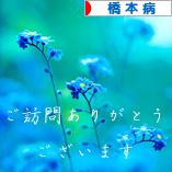 にほんブログ村 病気ブログ 橋本病へ