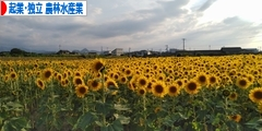 にほんブログ村 ベンチャーブログ 起業・独立(農林水産業)へ