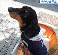 にほんブログ村 ハンドメイドブログ 手作り犬用品・グッズへ
