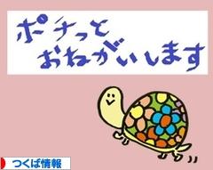 にほんブログ村 地域生活(街) 関東ブログ つくば情報へ