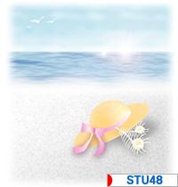 にほんブログ村 芸能ブログ STU48へ