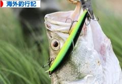 にほんブログ村 釣りブログ 海外釣行記へ