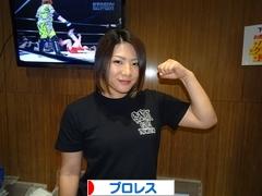 にほんブログ村 格闘技ブログ プロレスへ