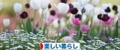 にほんブログ村 ライフスタイルブログ 明るく楽しい暮らしへ