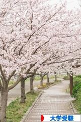 にほんブログ村 受験ブログ 大学受験(本人・親)へ